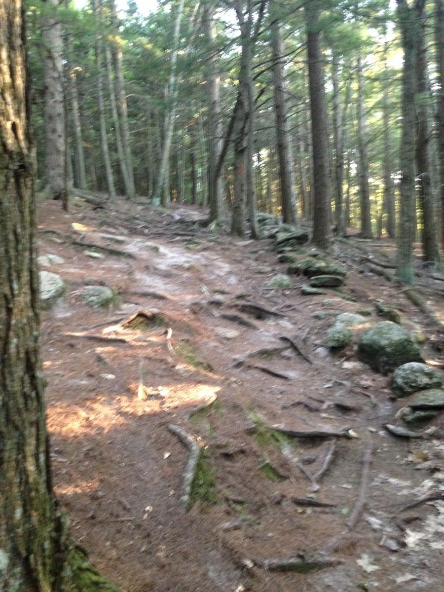 Boundary Trail